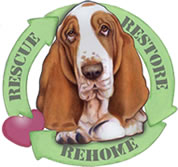 Michigan Basset Rescue